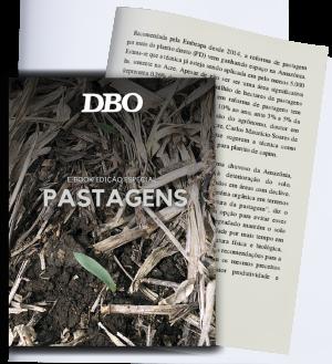 Páginas-ebook-pastagem