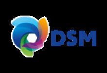 show_rural_coopavel_2020_patrocinadores_dbo_DSM